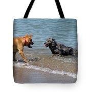 Dogs In Lake Michigan Tote Bag