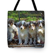 Dogs. Let Us Out #2 Tote Bag