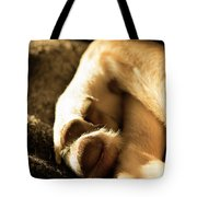 Dogs Paws Tote Bag