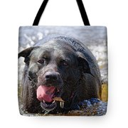 Dogs Sticks And Ponds Tote Bag