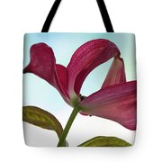 Dogwood Ballet 3 Tote Bag