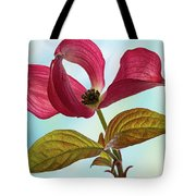 Dogwood Ballet 4 Tote Bag