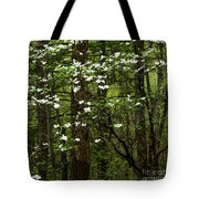 Dogwood Blooming In Forest Tote Bag