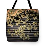 Dogwood Cabin, Smoky Mountains, Tennessee Tote Bag
