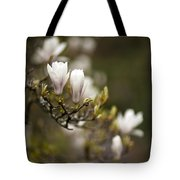 Dogwood Gathering Tote Bag