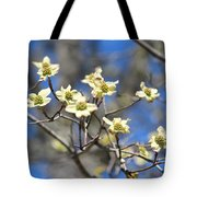 Dogwood In Bloom Tote Bag