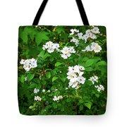 Dogwood In Bloom Tote Bag