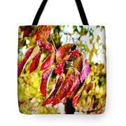 Dogwood Leaves Tote Bag