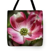 Dogwood Spring Tote Bag