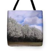 Bradford Pear Trees On Display Tote Bag