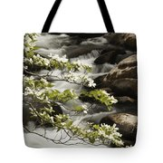 Dogwoods Over Cascades  Tote Bag