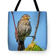 Doing The Spilts Tote Bag