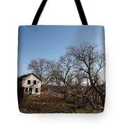 Dollhouse Tote Bag
