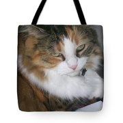 Dolly The Grumpy Cat Tote Bag