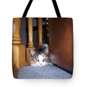 Dolly The Pouting Cat Tote Bag