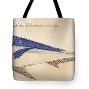 Dolphin, 1585 Tote Bag