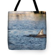 Dolphin By The Dock Tote Bag