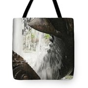 Dolphin Fountain 2 Tote Bag
