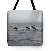 Dolphin Joy 2 Tote Bag