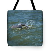 Dolphin Race Tote Bag