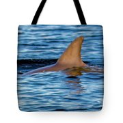 Dolphin Sighting Tote Bag