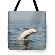 Dolphin Splash Tote Bag