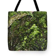 Dome Of Trees Tote Bag
