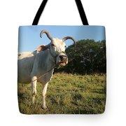 Domestic Animal 02 Tote Bag