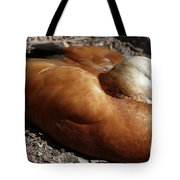 Domestic Mandarin Duck Close Up Tote Bag
