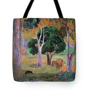 Dominican Landscape Tote Bag