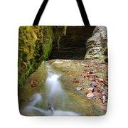 Donaldson Cave Tote Bag