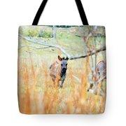 Donkey 006 Tote Bag