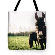 Donkey And Pony Tote Bag