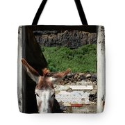 Donkey At The Window Tote Bag