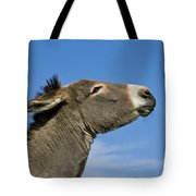 Donkey Demanding A Treat Tote Bag