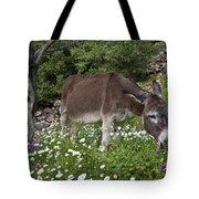 Donkey Grazing In Greece Tote Bag