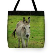 Donkey On A Farm Tote Bag