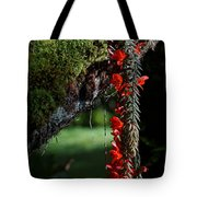 Donkey Tail Blossoms Tote Bag