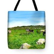 Donkeys Under A Blue Sky In Green Hills Tote Bag