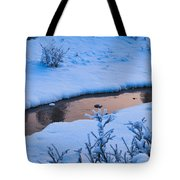 Donnelly Creek In Winter Tote Bag