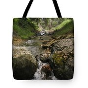 Donner Creek Tote Bag