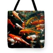 Don't Be Koi Roy Tote Bag