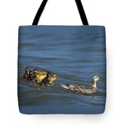 Don't Bother Mother Tote Bag