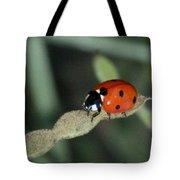 Don't Bug Me Tote Bag