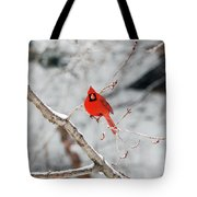 Don't Chirp With Your Mouth Full Tote Bag