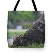 Don't Look While I Hide It Tote Bag