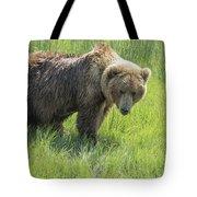 Don't Mess With Mama Bear Tote Bag by Belinda Greb