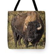 Don't Mess With This Bison Tote Bag