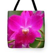 Dendrobium Orchid 2 Tote Bag