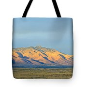 Dos Cabezas Tote Bag